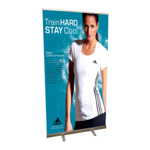 Vinyl Banner Stand for Promotion